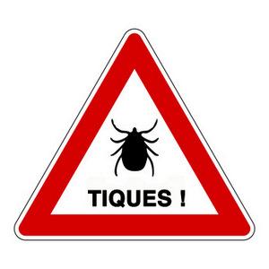 Tiques : attention danger